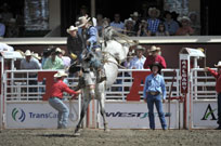 Events Calgary Stampede