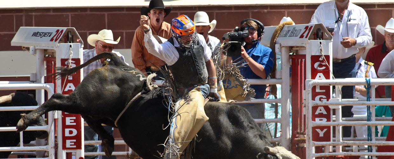 Rodeo Calgary Stampede 2015