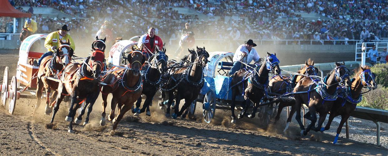 Gmc Rangeland Derby Calgary Stampede