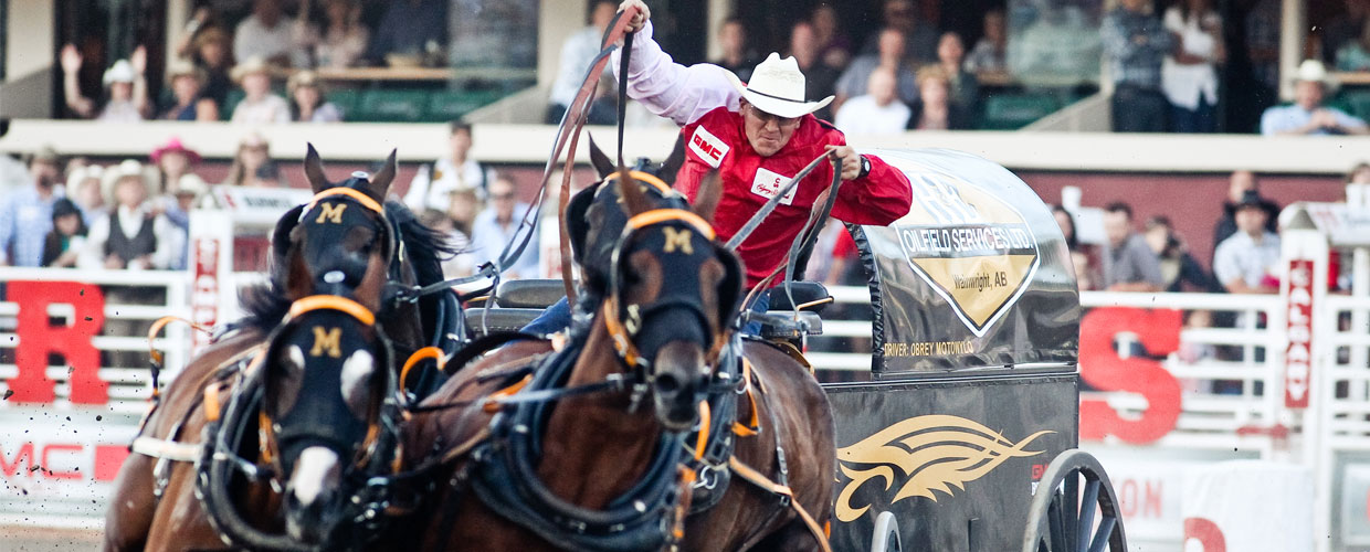 2015 Drivers Calgary Stampede